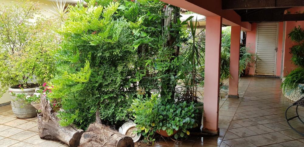 Alugar Casa / Padrão em Bauru R$ 2.600,00 - Foto 34