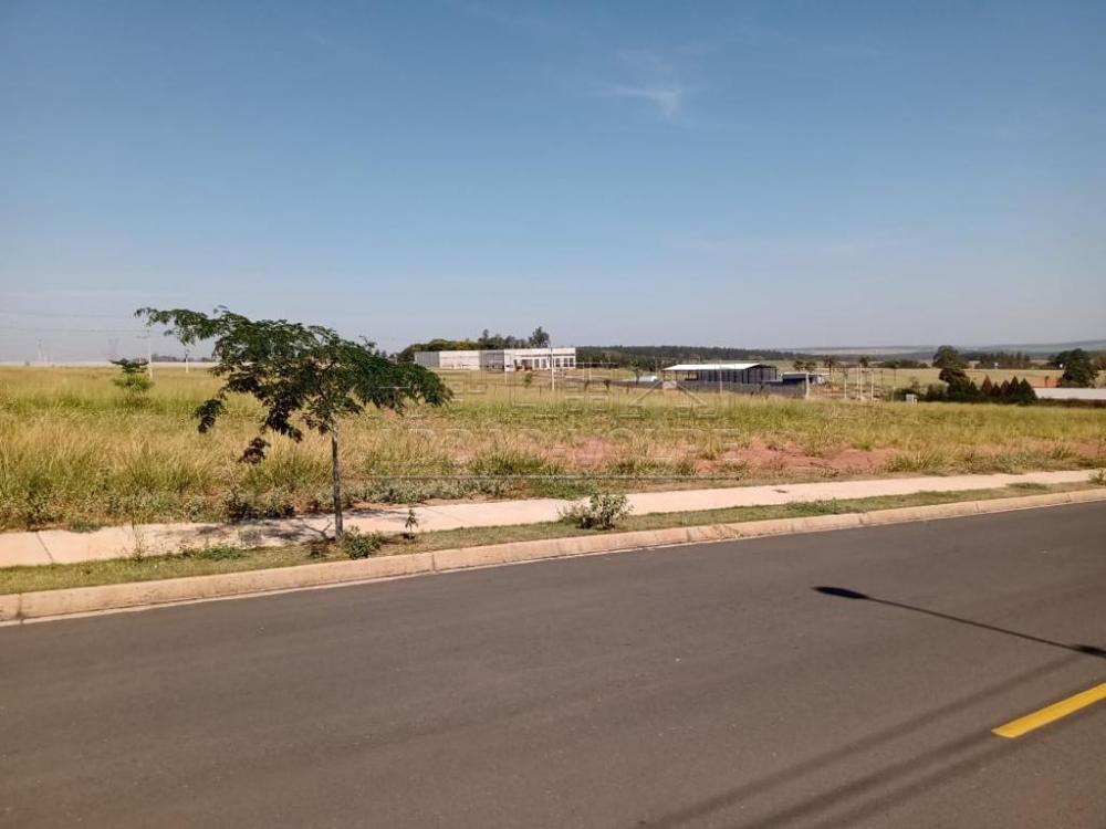 Comprar Terreno / Padrão em Arealva R$ 430.000,00 - Foto 1