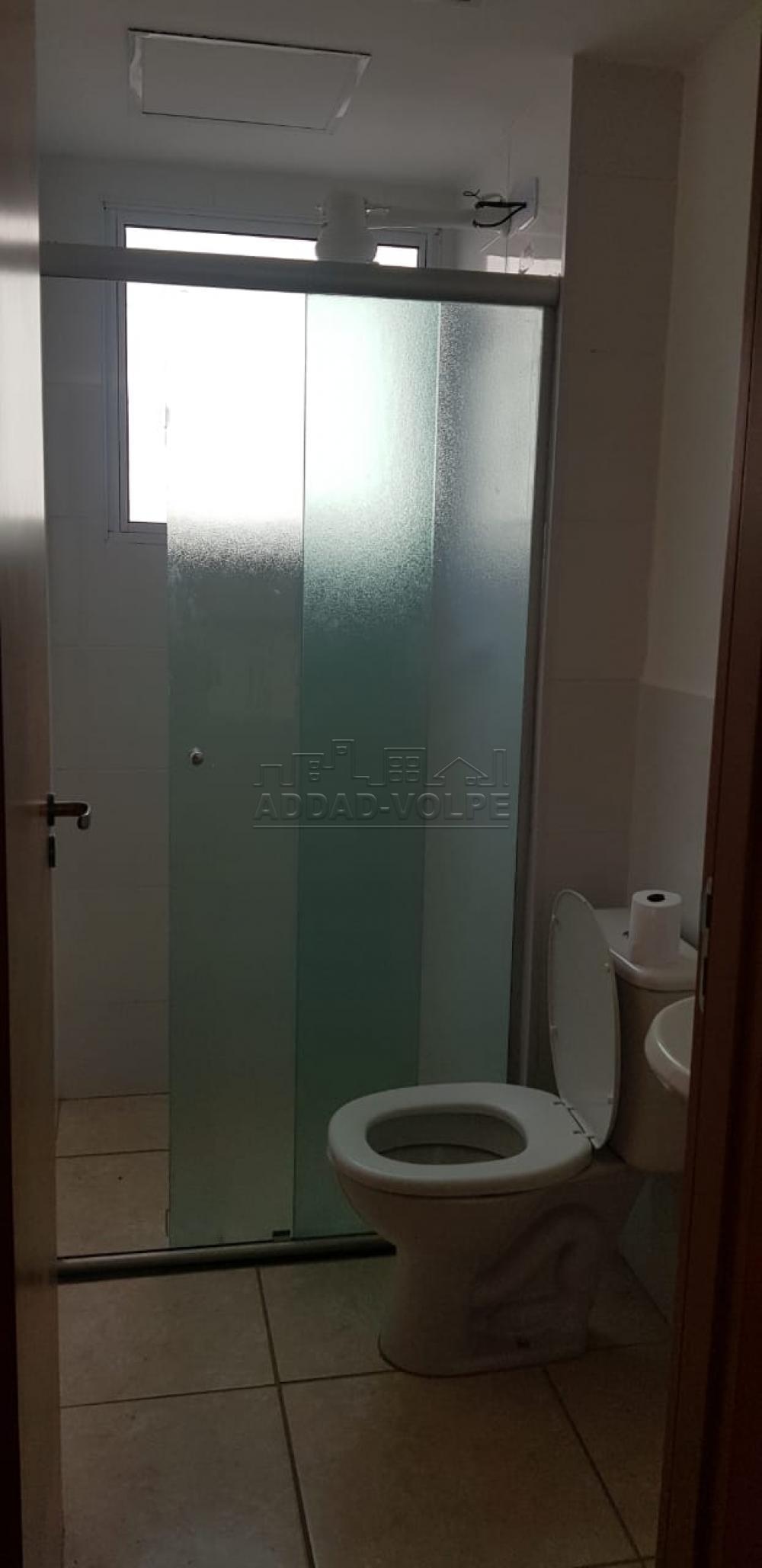 Alugar Apartamento / Padrão em Bauru R$ 650,00 - Foto 7