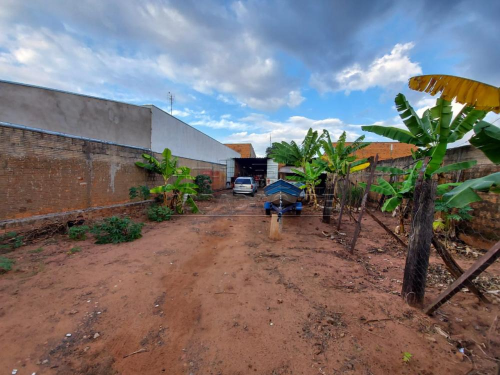 Comprar Terreno / Padrão em Bauru R$ 175.000,00 - Foto 1