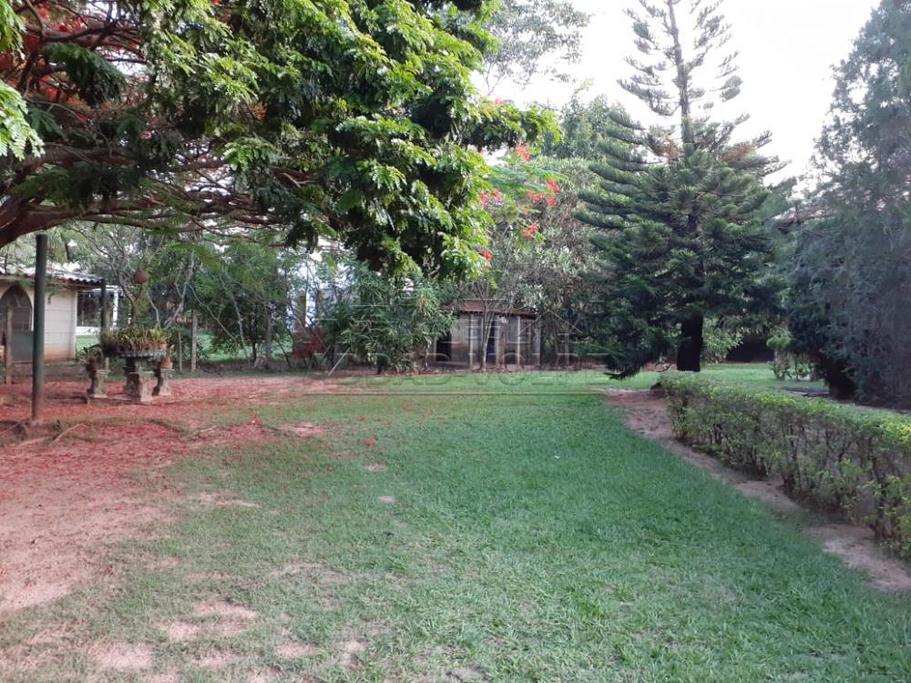 Comprar Rural / Chácara em Piratininga R$ 800.000,00 - Foto 2