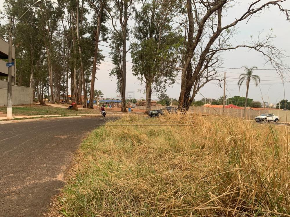 Comprar Terreno / Padrão em Bauru R$ 195.000,00 - Foto 2