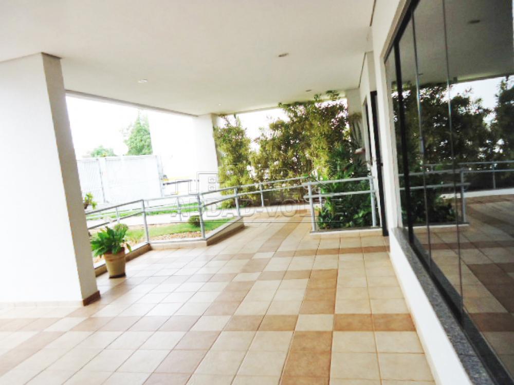 Alugar Apartamento / Padrão em Bauru R$ 1.300,00 - Foto 25