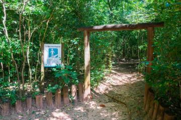 Alugar Casa / Condomínio em Bauru R$ 6.500,00 - Foto 53