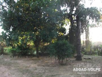 Alugar Rural / Chácara em Piratininga. apenas R$ 800.000,00