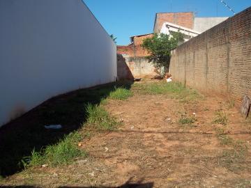 Alugar Terreno / Padrão em Bauru. apenas R$ 100.000,00