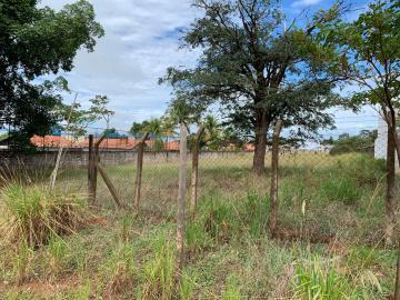 Alugar Terreno / Condomínio em Bauru. apenas R$ 750.000,00