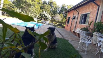Comprar Rural / Chácara em Piratininga R$ 800.000,00 - Foto 4