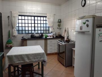 Comprar Rural / Chácara em Piratininga R$ 800.000,00 - Foto 10