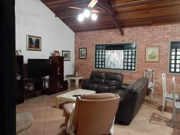 Comprar Rural / Chácara em Piratininga R$ 800.000,00 - Foto 9
