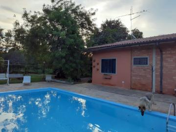 Comprar Rural / Chácara em Piratininga R$ 800.000,00 - Foto 6