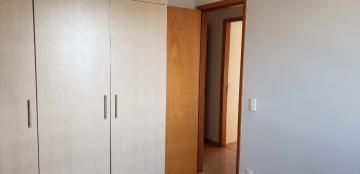 Alugar Apartamento / Padrão em Bauru R$ 1.300,00 - Foto 13