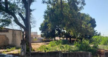 Comprar Terreno / Padrão em Bauru R$ 850.000,00 - Foto 1