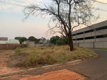 Comprar Terreno / Padrão em Bauru R$ 195.000,00 - Foto 4