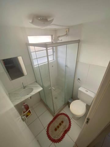 Alugar Apartamento / Padrão em Bauru R$ 1.200,00 - Foto 11